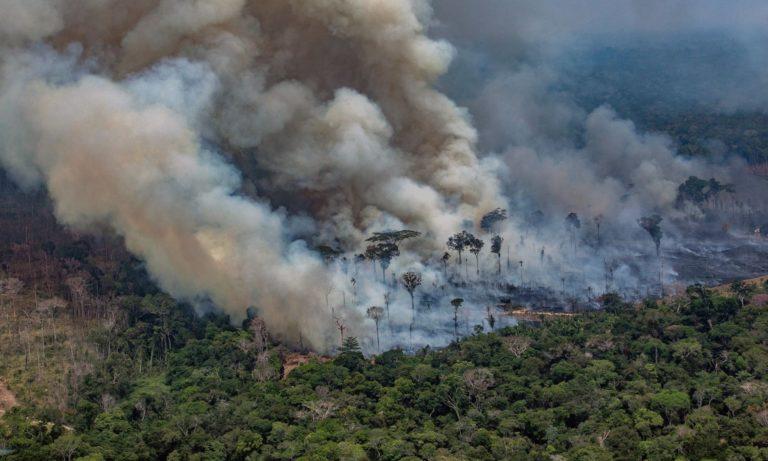 Amazon Apocalypse